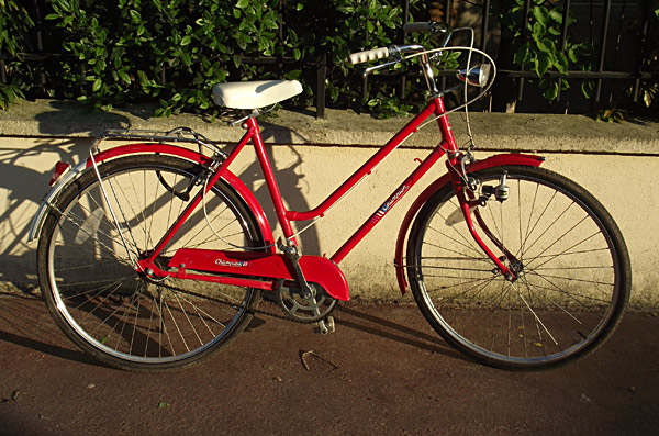 single-speed-rouge-01