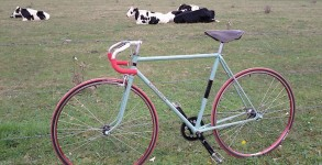 single-speed-perrinet-vintage-01