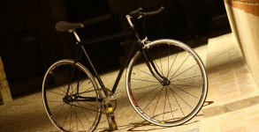 singlespeed vincent 01