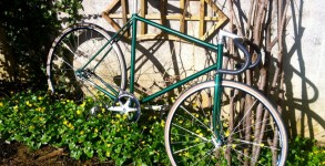 pignon-fixe-vert-reynolds
