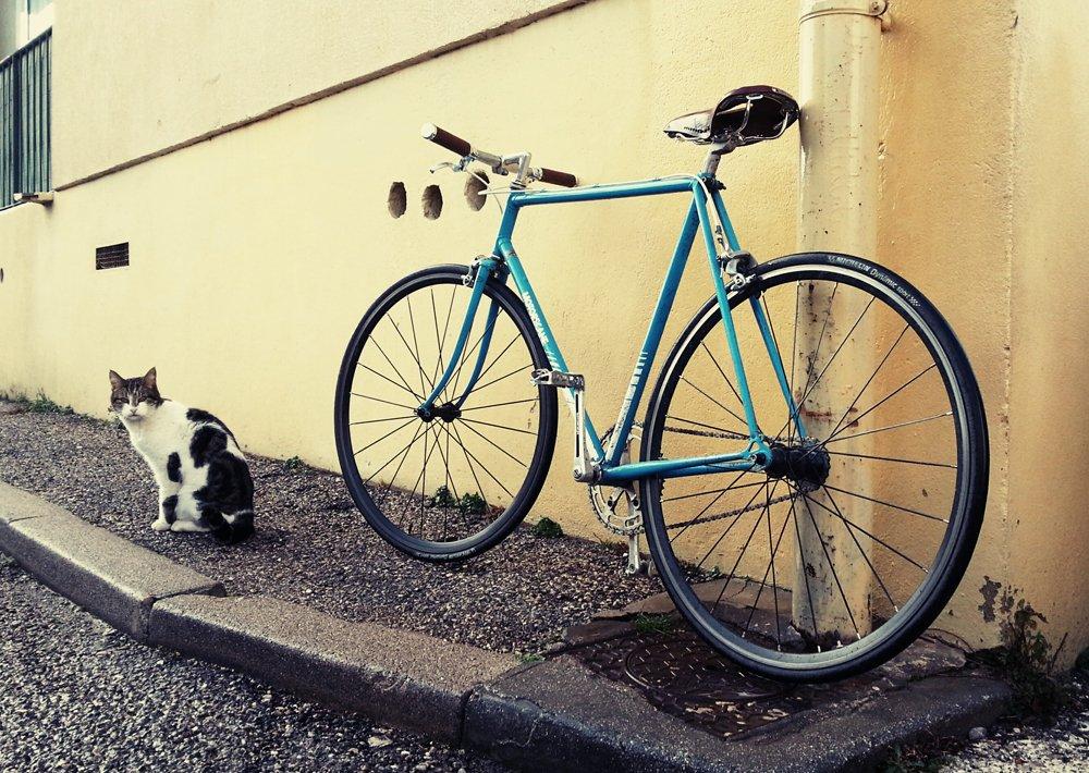 Vélo de course Motobécane devenu singlespeed